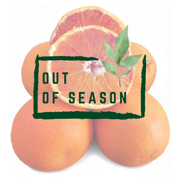 Organic Tarocco Blood Oranges out of season