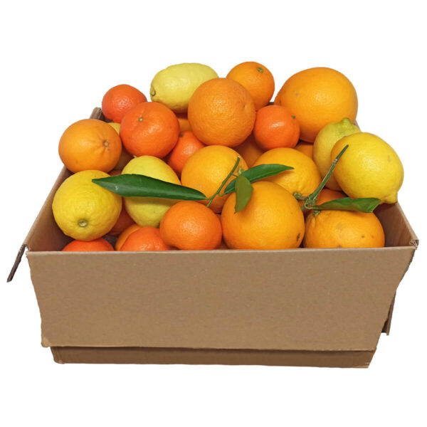 Organic Citrus Fruit Mix