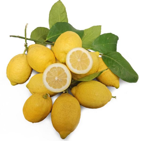 Limone femminello siracusano biologico