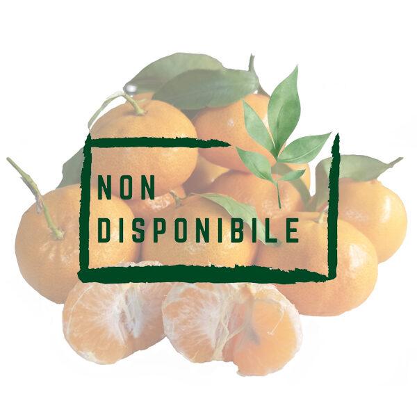 Mandarini Ciaculli Biologici non disponibile