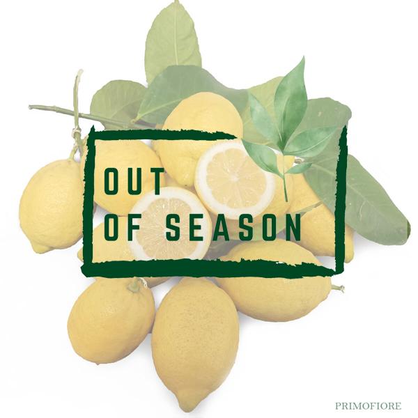 Organic Syracuse Femminello Lemons Primofiore out of season